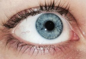 Eye (Blue Eye Stock) by OneEyeRed