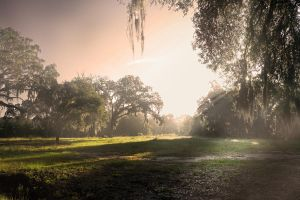 Seminar 1 - panoramic 9 by Elle-Be-Photography