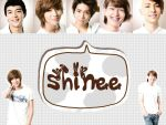 Shinee by empresses101
