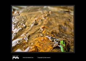 dirt by miorio