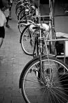 Bike all you can by markaroni