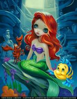 Ariel:  Part of Your World by jasminetoad