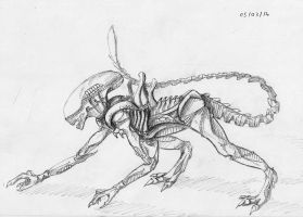 Xenomorph sketch by Khanashi
