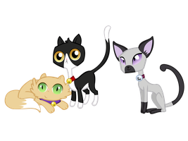 MLP: Cats by mkovic