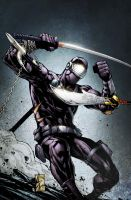 SnakeEyes 4 Cover B by spidermanfan2099