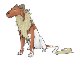 Sheepdog adopt by ThisDyingDog
