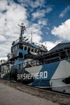 Sea Shepherd in Germany by FreSch85
