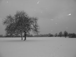 a snowy park by stucker1987