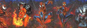Spider-Man 5 Card Puzzle by AHochrein2010