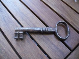 the key by TOVARDAMASO