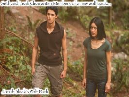 Seth and Leah Breaking Dawn 1 by CriminalMindsLover19