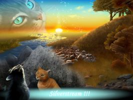 Warrior Cats - Silverstream`s Death by Midnight19488