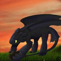 HTTYD: Toothless by spongyducky