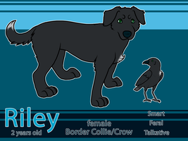 Riley Reference 2012 by Toucat
