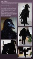 Raven Costume 'Nevar' - 2000 by Nightlyre