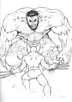 holiday sketch 7-hulk_wolvie by deemonproductions