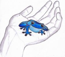 Frog in hand by 5cris5