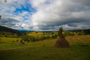 Autumn's here by patratica