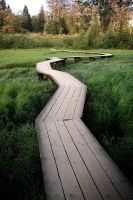 Walkway over swamp by canada-man
