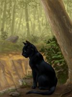 Hollyleaf Nobody by Alex-Harrier