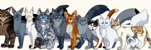 Loads Of Cats by Nifty-senpai