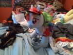 Rainbow  Dash in Reds Clothing by Athletic-Dashie