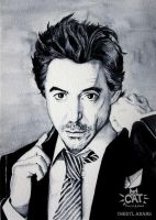 Robert Downey Jr by CherylCAT