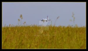 Malev landing over the field by Skyrover