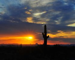 Sonora Desert Sunset by flatsix911