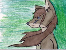 Gray Fox anthro ATC by anne-t-cats