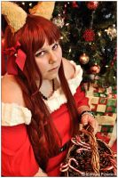 Spice And Wolf: A Holiday Basket by CosplayerWithCamera