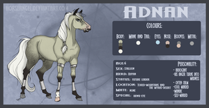 Adnan Reference Sheet by green-ermine
