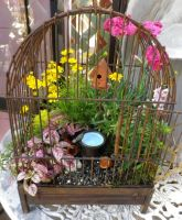 Mini Birdhouse in Birdacage by ShipperTrish
