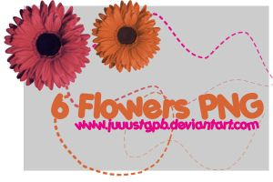 6 Flowers PNG by JuuustGPB