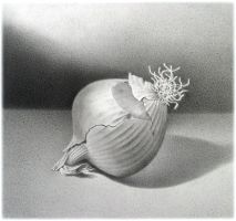 onion by redbit