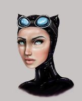Catwoman by Tommy2pockets