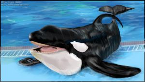 ORCA by rajacic