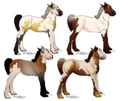 Gypsy Vanner foals by RainbowFountains