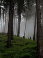 Shogran II by HamidQureshi