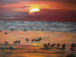 Gulls at Sunset take 2 by Nadia354