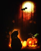 All Hallows Eve's Cat by Ferelwing