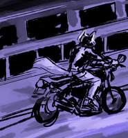Motorcycle by captyns