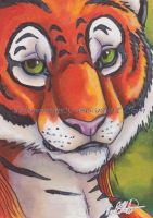 Ress ACEO by Illuminaiae