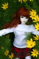 Amongst Flowers by nathalye