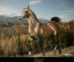 Regal by Penhuin
