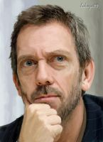 Hugh Laurie by ladunya