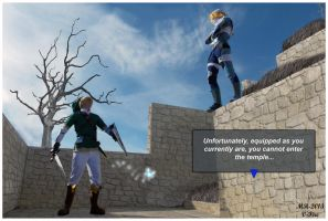 Link runs into Sheik again by VFire