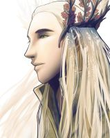 Thranduil by Breetroad