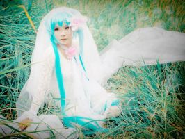 AugustBride 3 by H-I-T-O-M-I