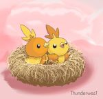 Torchic Brothers by Thunderwest